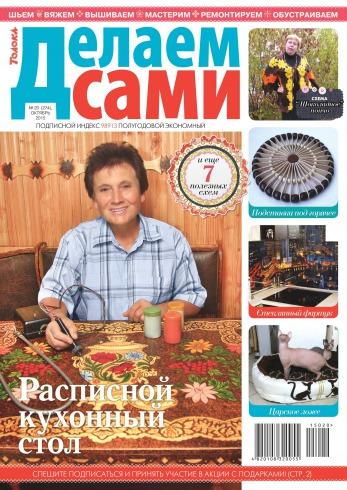 Журнал Делаем сами 20 Октябрь 2015 - читайте онлайн journals.ua