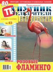 Спутник телезрителя №43 10/2021