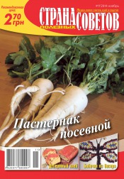 Страна полезных советов №11 11/2014