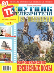 Спутник телезрителя №1 01/2021