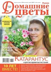 Домашние цветы №10 10/2017