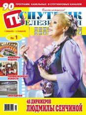 Спутник телезрителя №1 01/2013