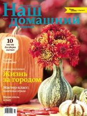Наш домашний журнал №10 10/2013