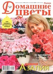 Домашние цветы №11 11/2017