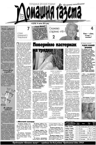 Домашня газета №15 04/2016